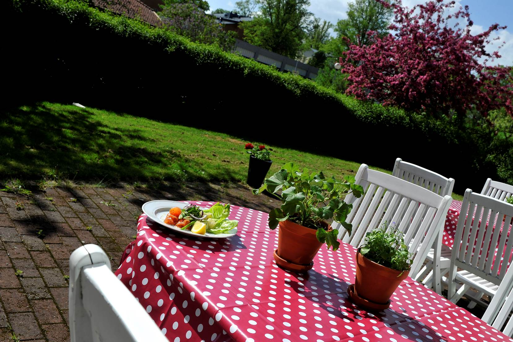 Ett bord utomhus med blommor på och en tallrik med mat